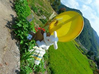 うさぎの収穫祭り