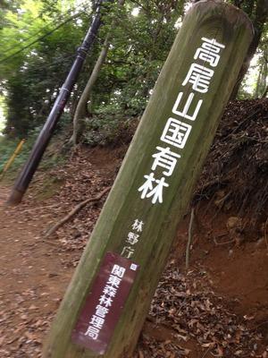 写真 2014-08-01 14 46 34