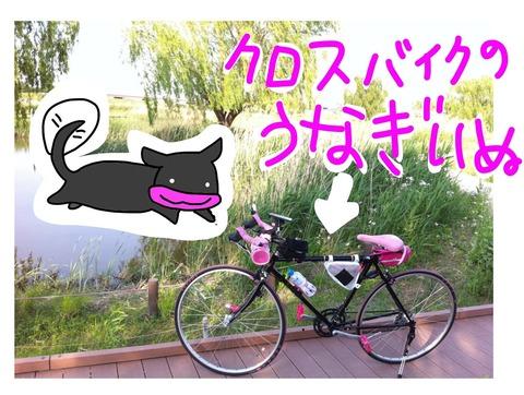 写真 2014-06-04 19 43 24