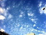 2012-09-15 14:39:00 写真1