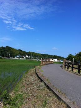 写真 2013-06-02 15 35 49