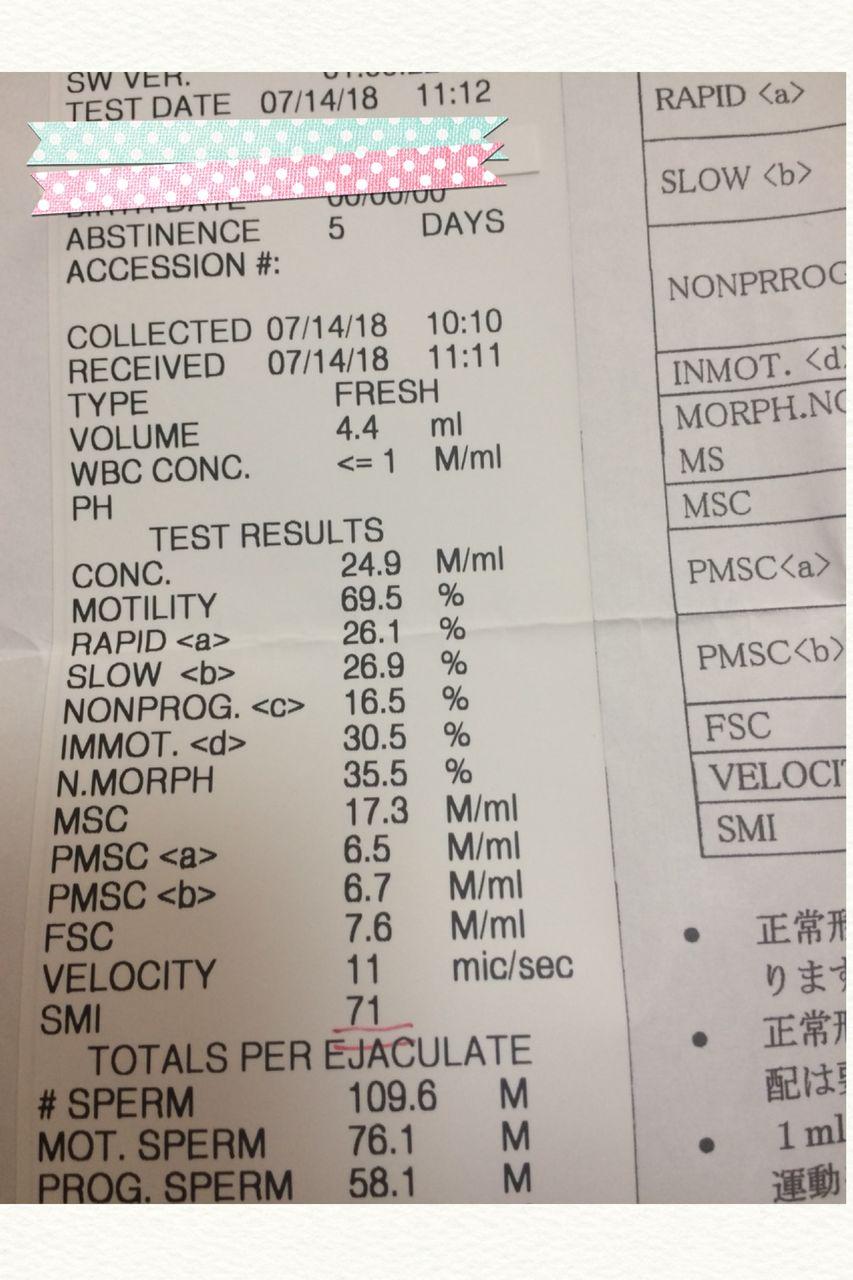 精度 精液 検査