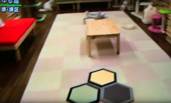 六角形の畳