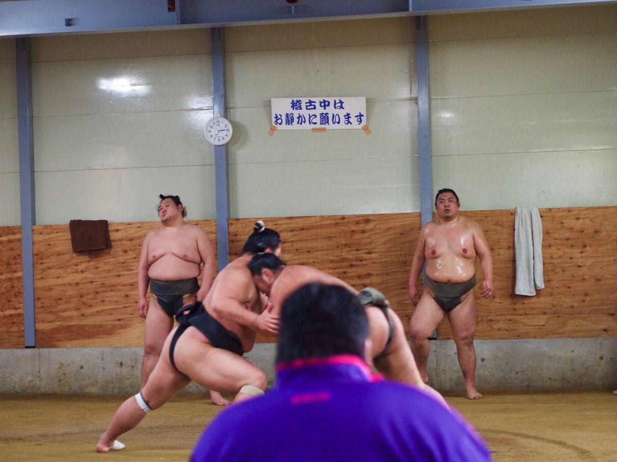 お相撲さんの練習風景