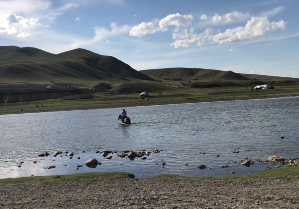 川を渡る馬