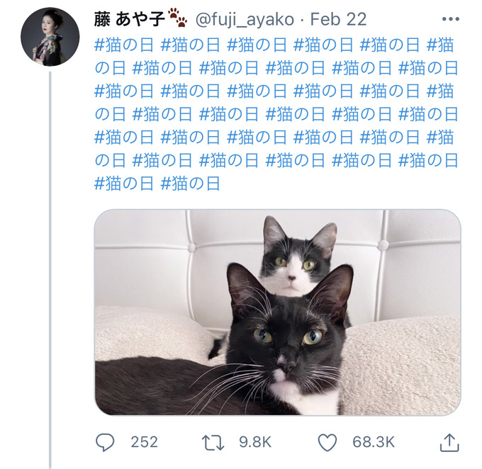 fuji14