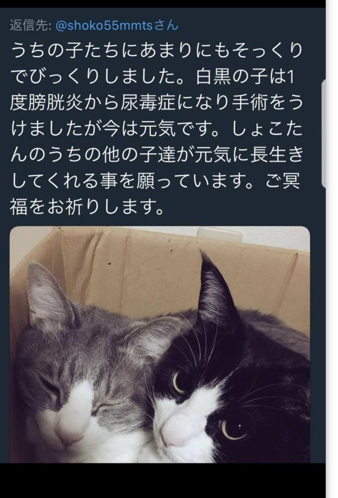 nakagawa9