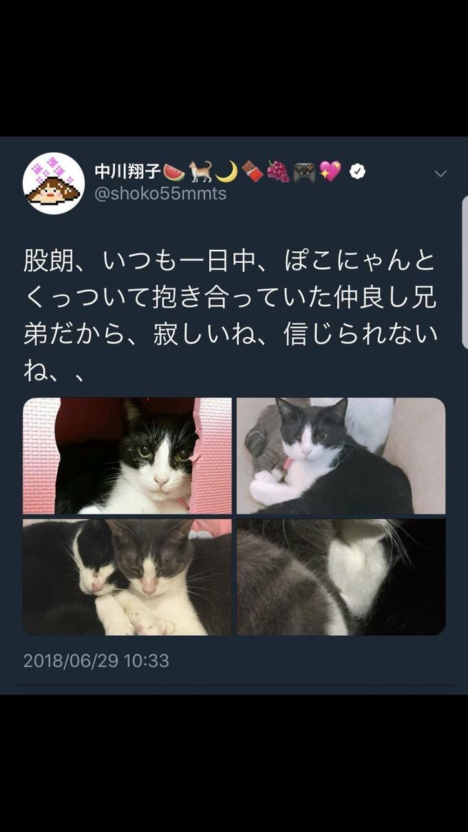 namakawa2