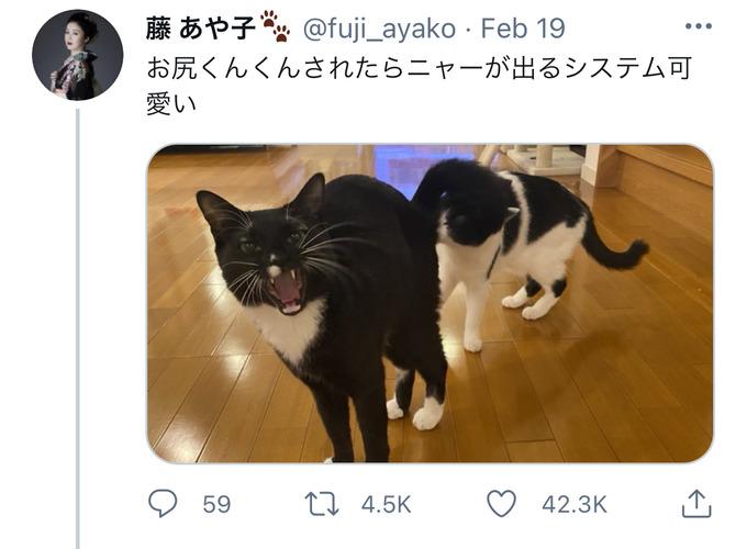 fuji18