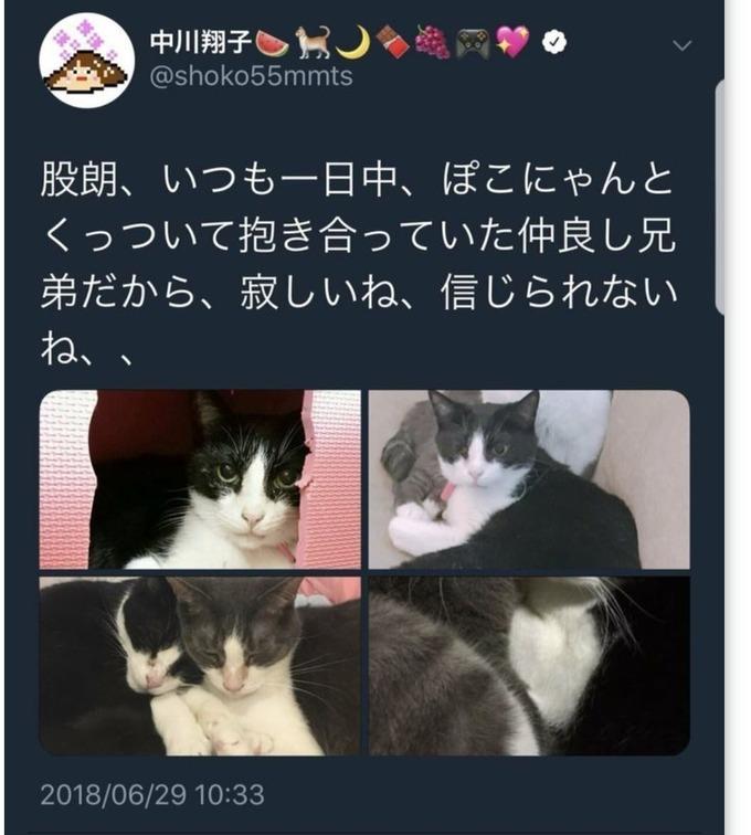 nakagawa8