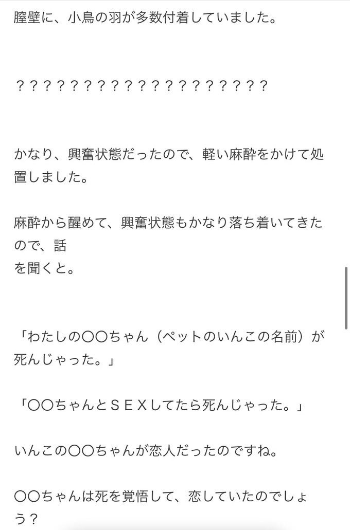 chitsu2