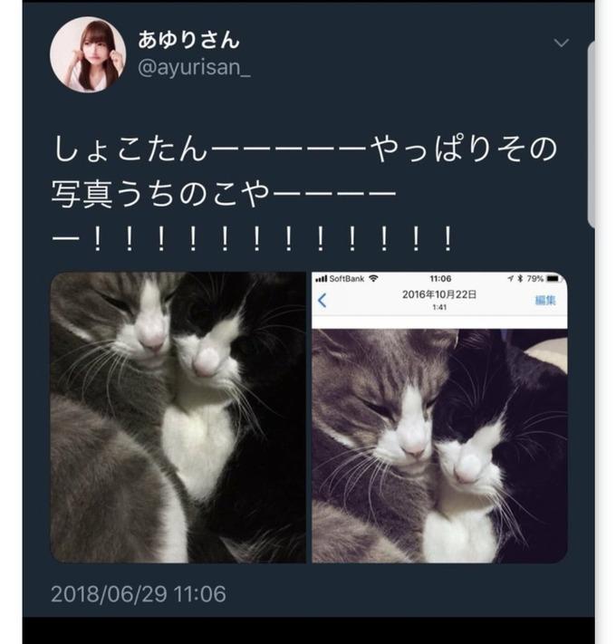 nakagawa10