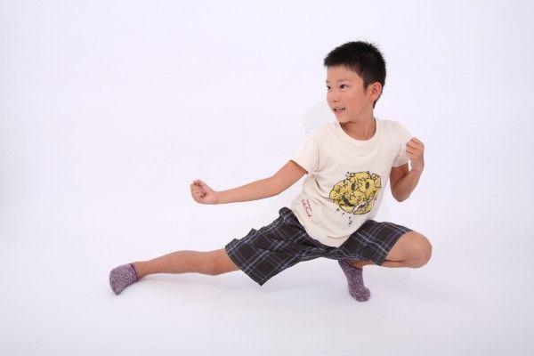 dansi