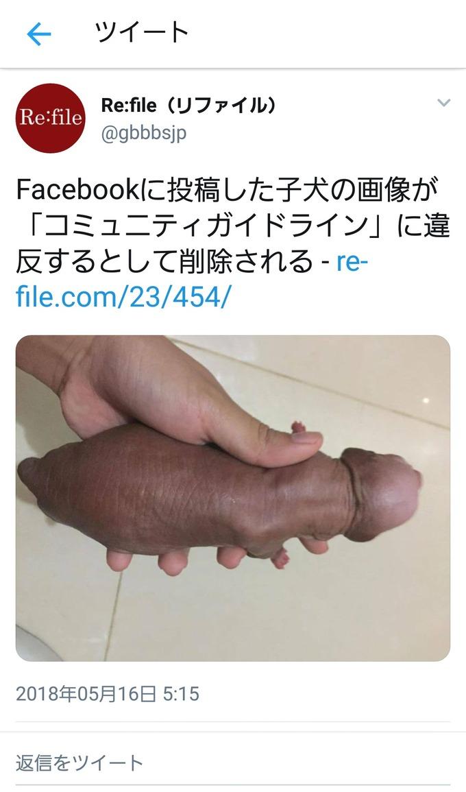 【悲報】ち○ちんに見える子犬、削除される