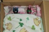 仮面ライダーたちに寝床を作ってやったんだが。