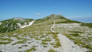 双六岳頂上手前の草原台地