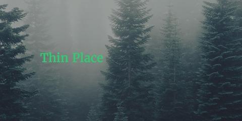 ThinPlace_Wolf