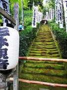 20100810鎌倉杉本寺2