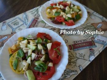 トマトと胡瓜のサラダ・桃のドレッシング和え