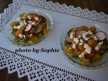 アボカドとトマトとラディッシュのレシピ