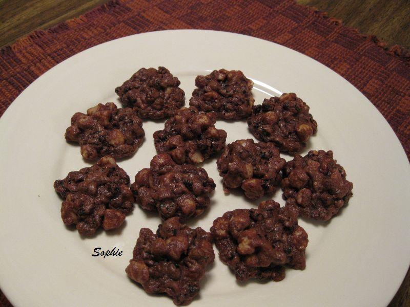 チョコレートレシピ: チョコレート・ピーナッツレーズン・キャンディークッキーの