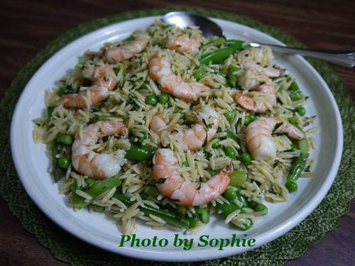 海老とオルゾのサラダ
