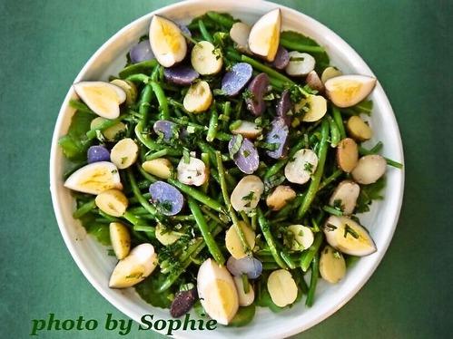 ベビーポテトとインゲン豆のサラダ