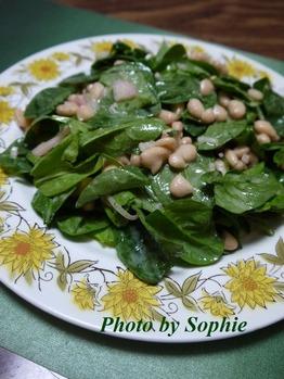 ほうれん草と白豆のサラダ