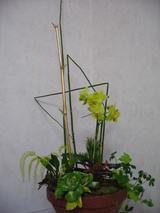 御正月の花