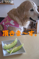 メロン食べる