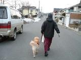パパと散歩だワンね。