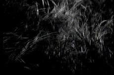 「風の又三郎」�-2