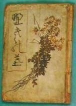 ����Ƥ���װ�ƣ������(1906)