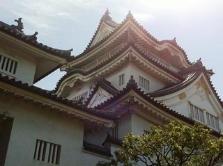 夏の岸和田城。