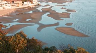 黒崎海岸干潟