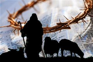 聖書と茨と羊飼いー