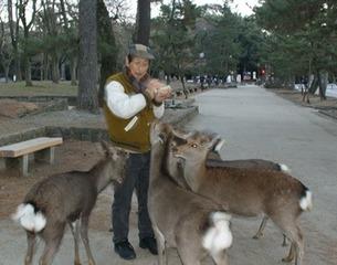 奈良公園559