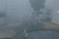 濃霧 064