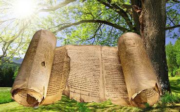 緑の森の聖書ミカエル小栗ー