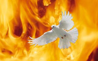 聖霊の火12098