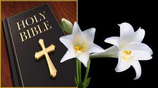 BIBLE&(29)