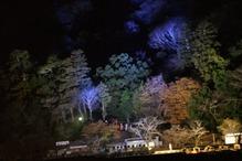 嵐山ライトアップ1232