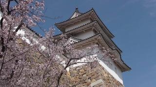 明石城ー櫓(70)