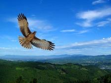 sky eagle002 精霊の力