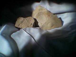 バビロンのへ戯画と土器