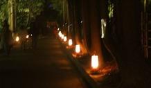 嵐山灯籠2