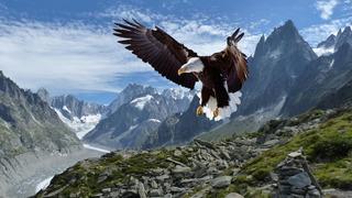 鷲ーEagle1234