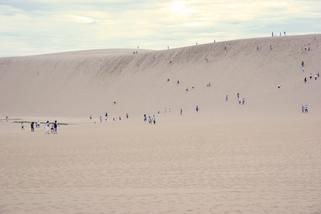 鳥取-大砂丘