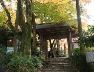 瑞宝寺公園9415