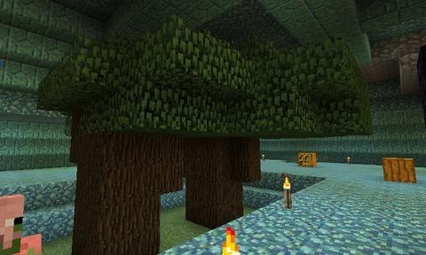 海底神殿01_06